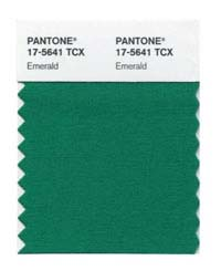 Pantone Pageant: Emerald Designer Salvias