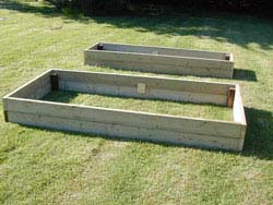 Salvia Small Talk: Raised Beds for Sage