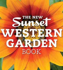Salvia Small Talk: New Sunset Western Garden Book App