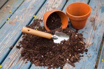 Container Gardening Basics: Selecting a Good Potting Mix