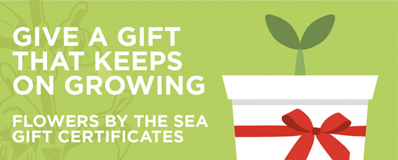 Flowers by the Sea Gift Certificates are perfect gifts